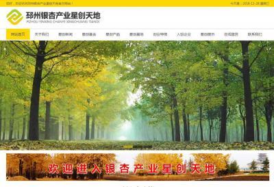 贺邳州银杏产业星创天地成功上线!