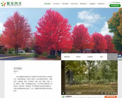 贺徐州市繁星四月园林绿化工程有限公司官网成功上线!